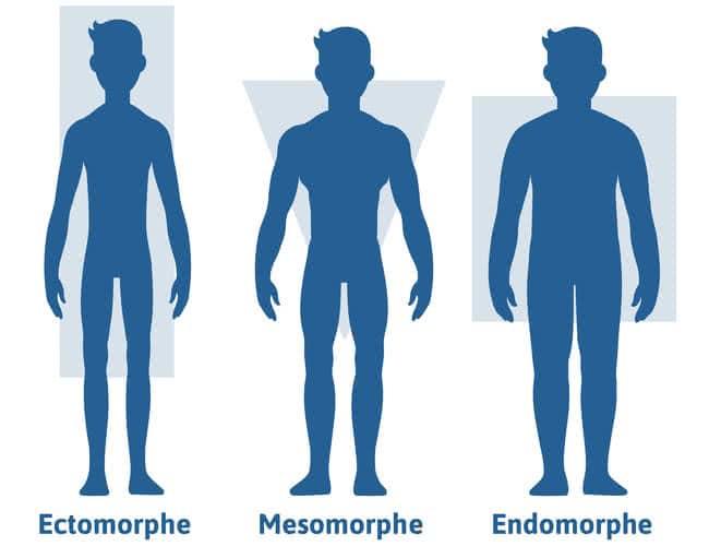 3-types-morphologies