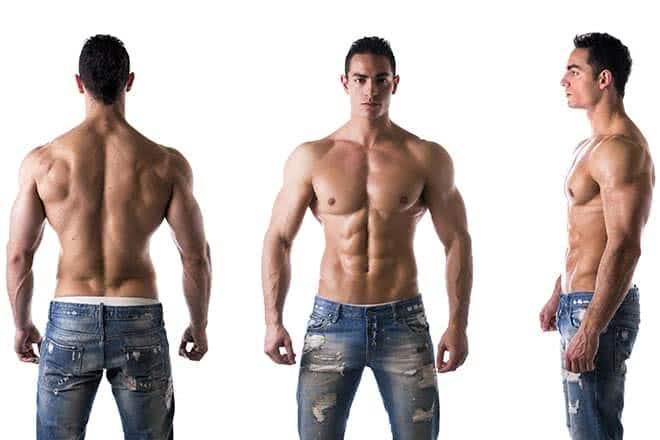 Les 3 grands types de morphologie à connaître en musculation