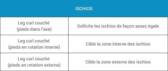 musculation-ischios