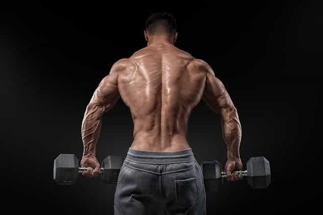 La musculation des trapèzes
