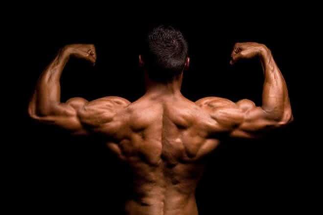 Conseils d'entraînement pour avoir un dos plus large