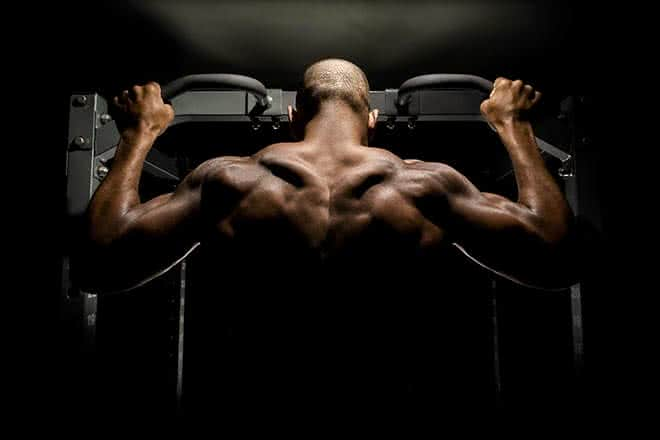 conseil-traction-musculation