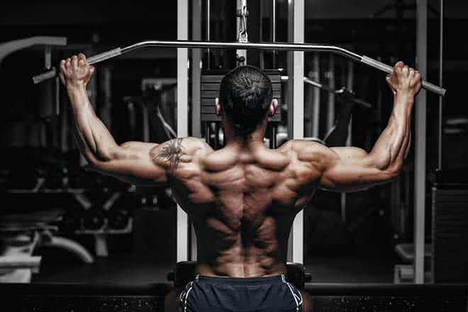 Ce qu'il faut savoir sur les différents types de fibres musculaires