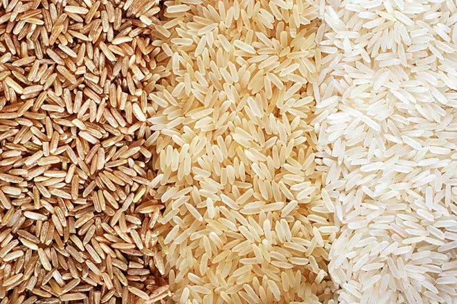 Riz blanc et complet : quelles différences et pourquoi en manger ?