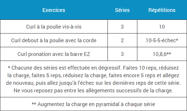 programme-musculation-biceps-court