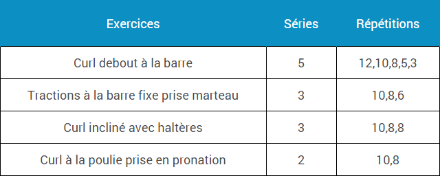 programme-musculation-biceps-force-puissance