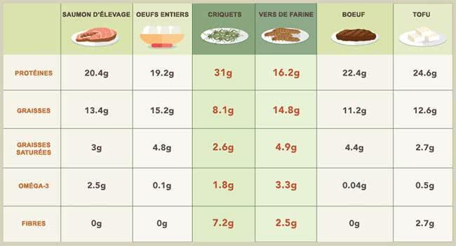 comparaison-nutrition-insectes-animaux