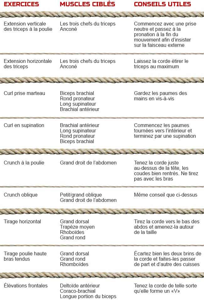 tableau-exercice-musculation-corde