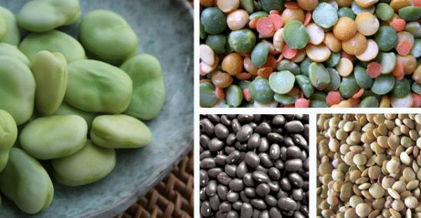 fibre-alimentaire-legumineuse