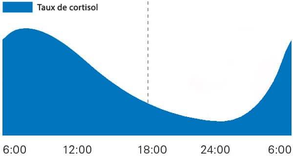 taux-cortisol-journee