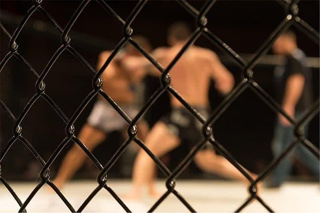 La Préparation Physique en MMA