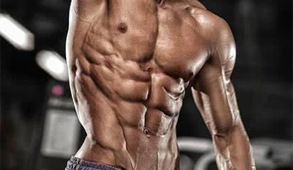 Anatomie des muscles abdominaux