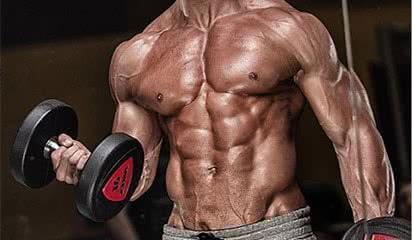biceps-programme-musculation