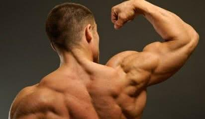 deltoide-exercices-musculation