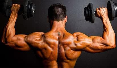 deltoide-programme-musculation