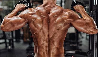 dos-exercice-musculation