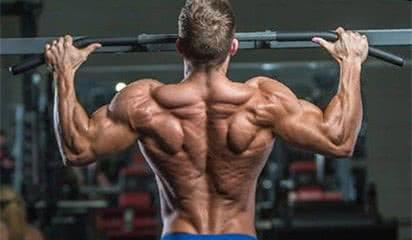 dos-programme-musculation