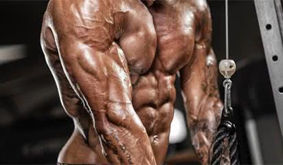 triceps-exercice-musculation