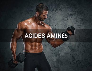 acides-amines